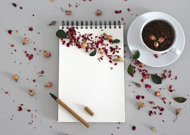 Práce s motivačním diářem